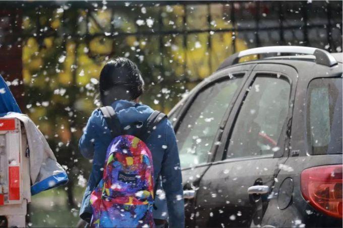 智米汽车空调过滤器:杨柳飞絮中守护家人出行健康
