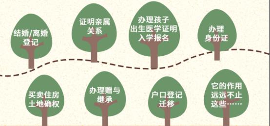 来了!广东居民户口簿电子证照!