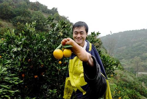 """战疫助农、为鄂拼单,好看视频""""暖春计划""""助无臂小伙售空10吨血橙"""