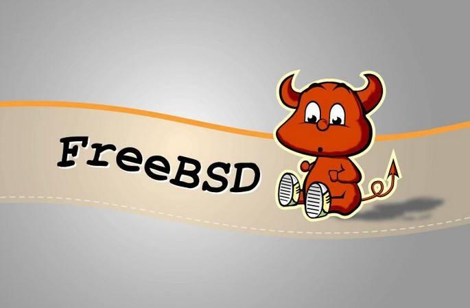 FreeBSD 13.0 Beta 1发布 正式版预估3月21日发布